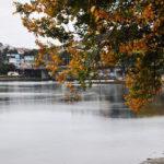 OutoMar: Outono no mar