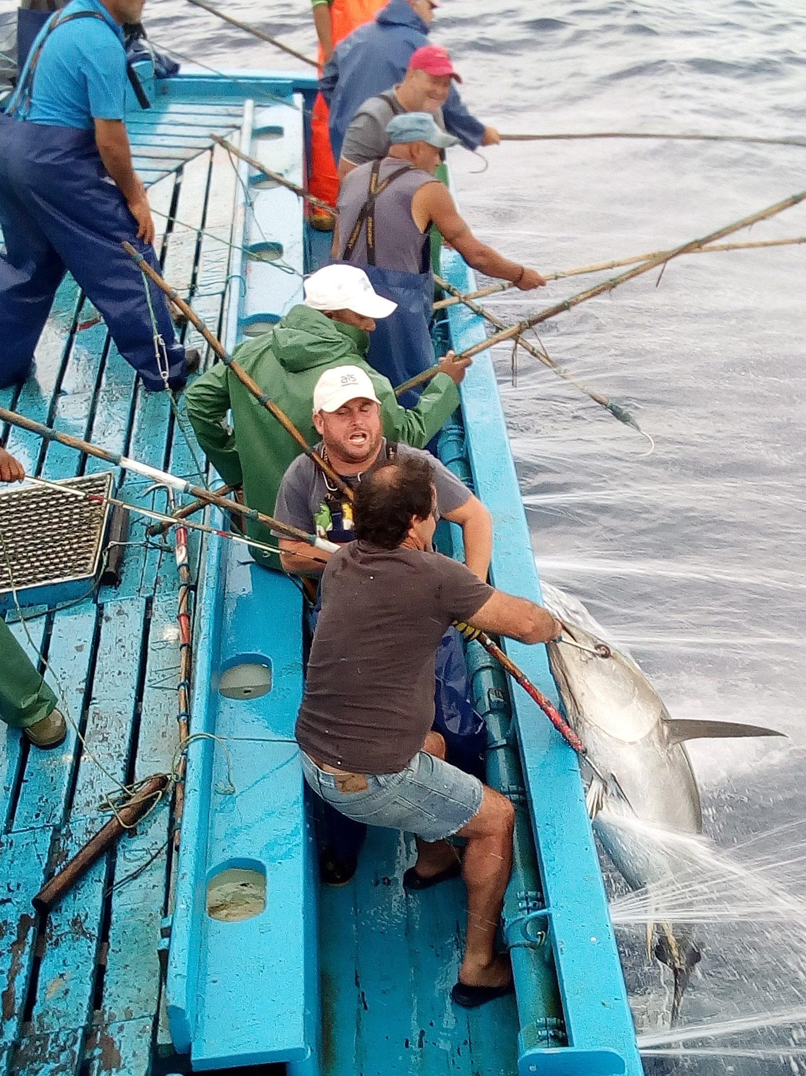 Pescadores de atun