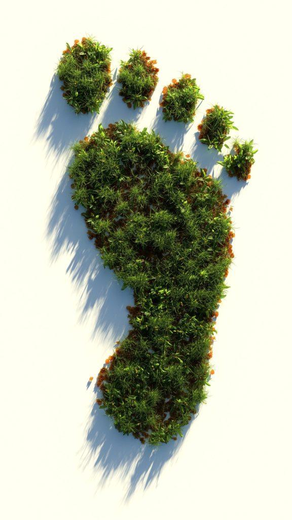 Pegada ecoloxica. Fonte: pixbay.com_